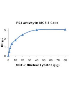 TF-Detect™ P53 activity assay