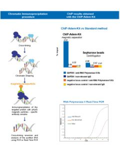 Complete kit (with ChIP-Adembeads Protein G) for chromatin IP