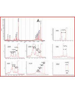 PhosPep - Phosphopeptide enrichment kit 50 rxns