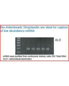 Bio-Adembeads Streptavidin  PLUS 200nm 0,5ml